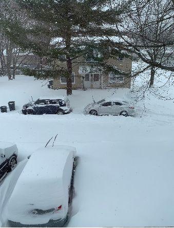 Peabody Snow